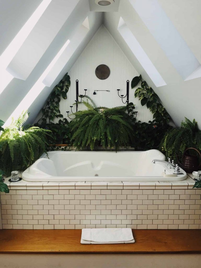Add boho style to your home by adding plants