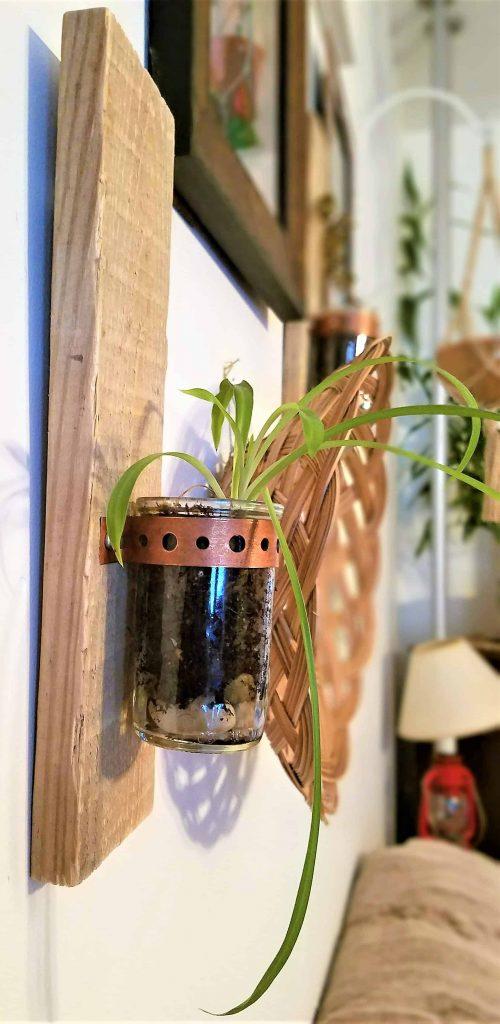 DIY candler holder gift- plant starter option